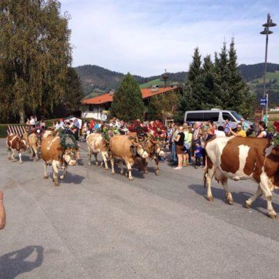 Tirol (3)